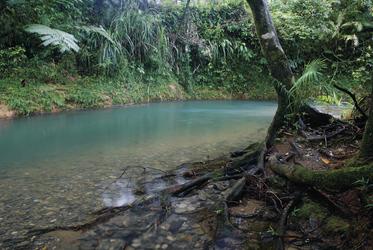 Blick auf den Coopers Creek