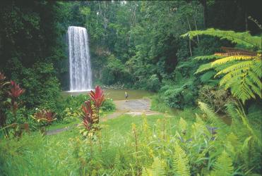 Millaa Millaa Falls, ©Tourism Queensland Image Library