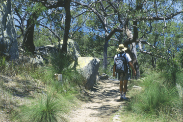 Auf Magnetic Island, ©Tourism Queensland Image Library