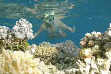 Blick Unterwasser