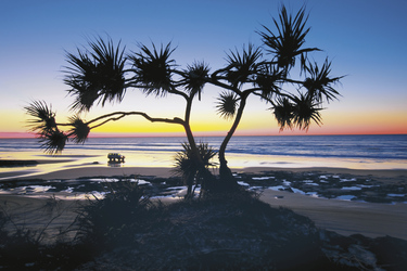 Seventy Five Mile Beach Fraser Island