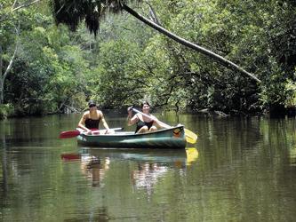 Noosa Everglades per Kanu