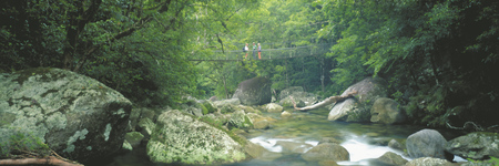 In der Mossman Gorge