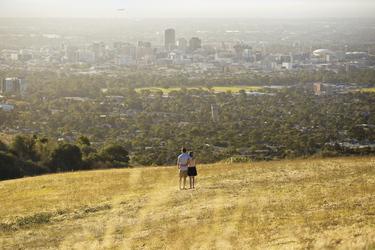 Blick auf Adelaide ©SATC