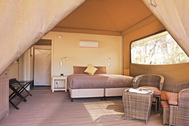 Ikara Safari Camp