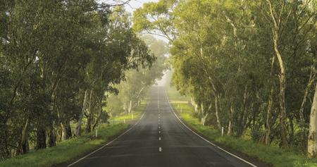 Adelaide Hills Road
