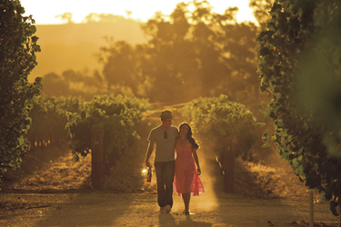 Clare Valley Weingut, ©SATC/Photographer