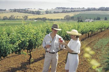 Weinprobe im Barossa Valley