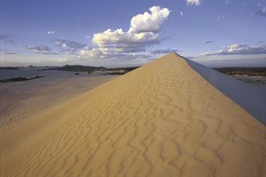 Little Sahara auf Kangaroo Island