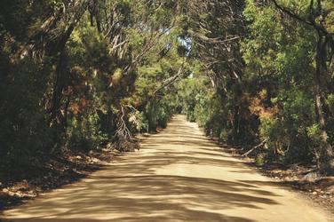 Straße zu den Hanson Bay Cabins