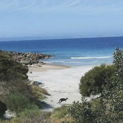 Pink Bay Beach