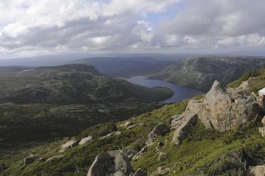 Ursprüngliche Natur Tasmaniens