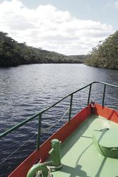 Arthur River Cruise