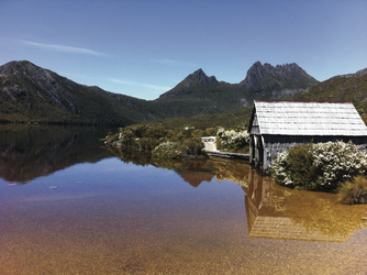 Lake Dove, Cradle Mountain NP