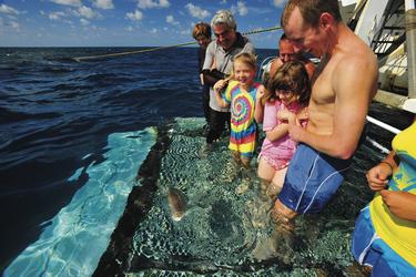 Bei der Fischfütterung