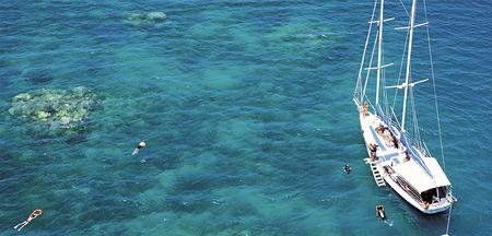 Ocean Free Segelschiff am Pinnacle Reef