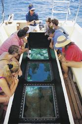 Unterwegs mit dem Glasbodenboot