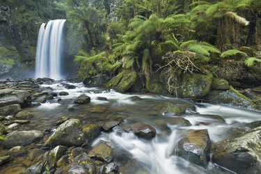 Great Otway Nationalpark