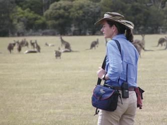 Känguru Sichtung