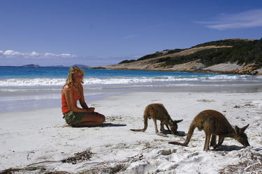 An der Lucky Bay in Esperance