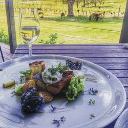 Mittagessen auf dem Weingut