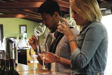 Bei einer Weinprobe