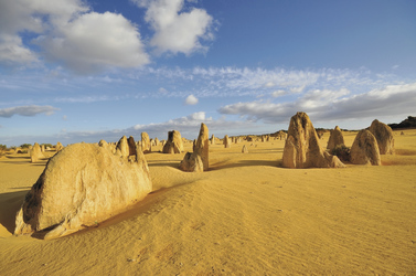 Pinnacles im Nambung NP