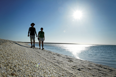Shell Beach, Shark Bay, ©Tourism Western Australia
