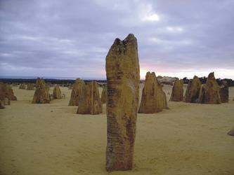 Pinnacles im Nambung Nationalpark