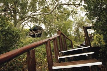 Steg zum Safarizelt
