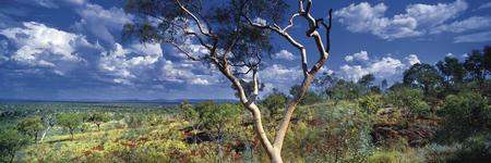 Karijini Nationalpark