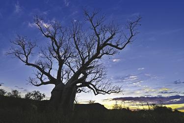 Sonnenuntergang in den Kimberleys