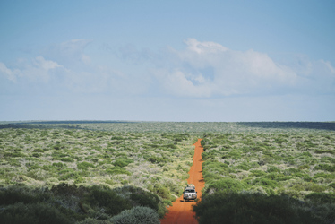 Track im Nationalpark