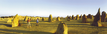 Bei den Pinnacles, Nambung NP
