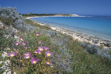 Blick auf Coral Bay