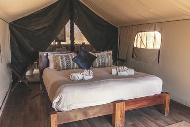 Zeltbungalow mit komfortablem Bett