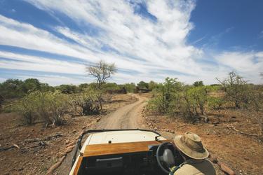 ©Mashatu Game Reserve