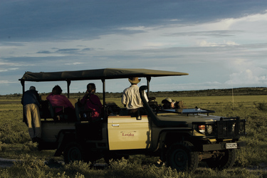 Auf Safari mit Letaka Safaris, ©Letaka Safaris