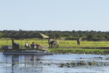 Bootsafari auf dem Chobe