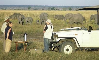 Pause während einer Pirschfahrt bei Chobe Safari Lodge