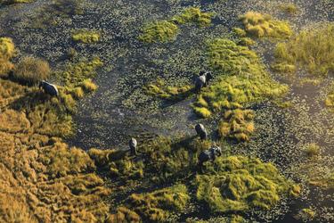 Okavango Delta aus der Luft, ©Arek Marud