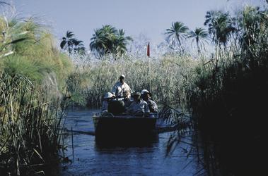 andBeyond mit dem Boot das Delta erkunden