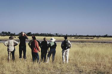 Pirschwanderung Botswana