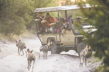 Auf Safari, ©Stu-Porter