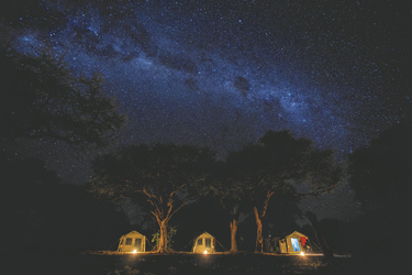 Letaka Safaris , ©Letaka Safaris