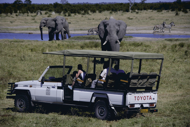 Savuti Safari Lodge Tierbeobachtung, ©Desert & Delta Safaris