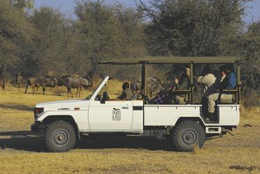 Auf Pirsch mit Laroo La Tau, ©Desert & Delta Safaris