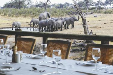 Blick auf das Wasserloch, ©Desert und Delta Safaris