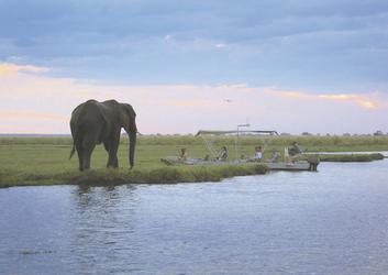 ©Under One Botswana Sky