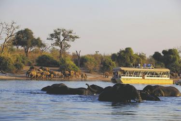 , ©Under One Botswana Sky